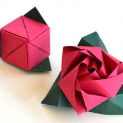 rosa cubo de papel