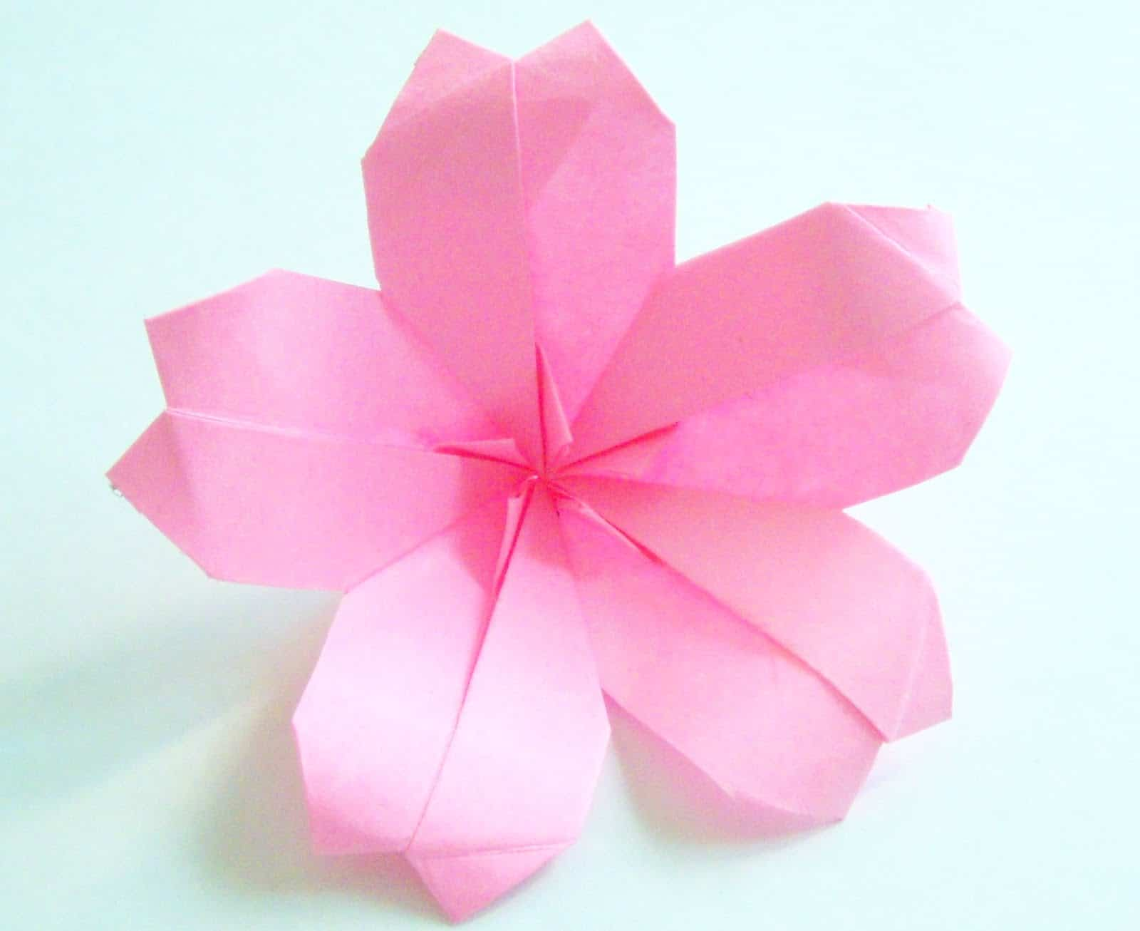 Cherry Blossom Craft Ideas